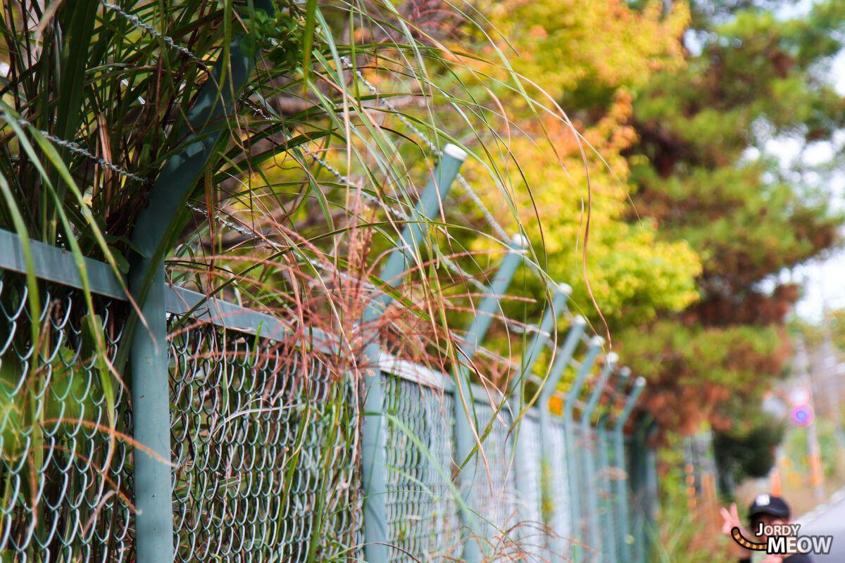 Nara Dreamland - Fence