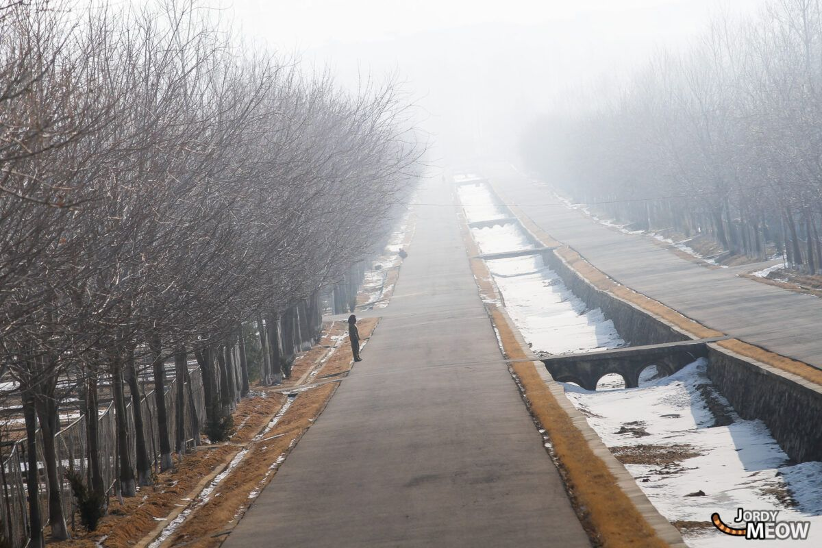 Ostriches Road, Pyongyang.