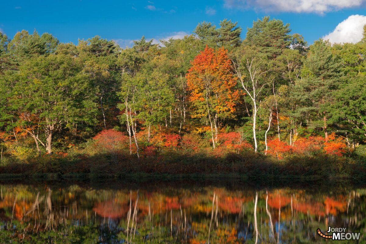 Biwaike Pond